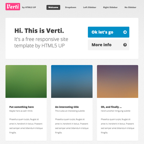 Verti Responsive Website Template