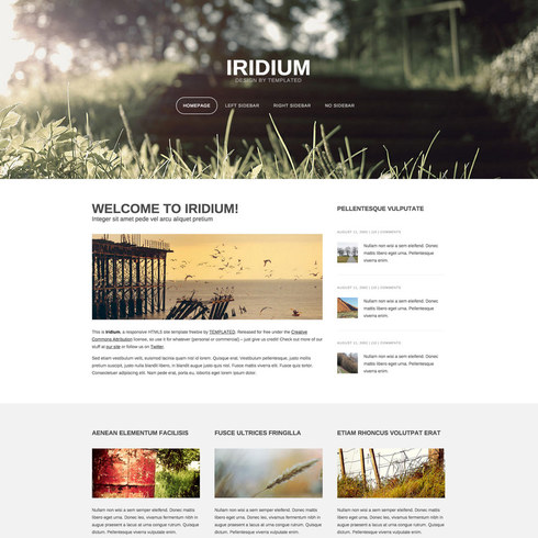 Iridium Free Responsive Blog Template