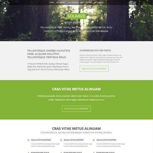 Solarize Free Responsive Template