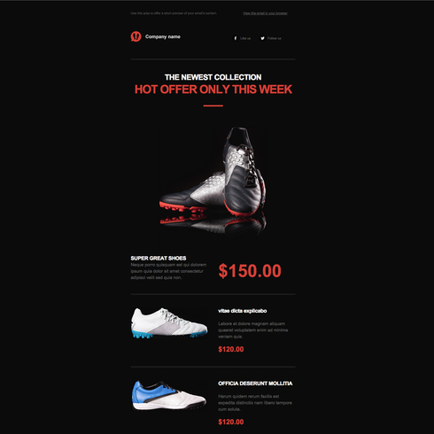 Footwear Responsive Email Newsletter Template