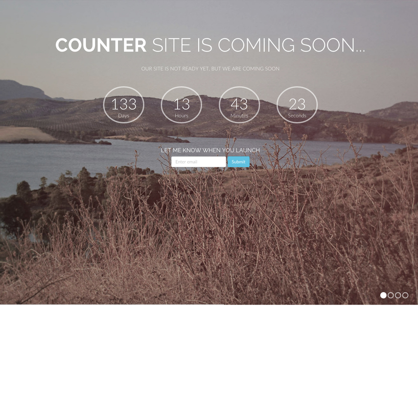 how to put a counter on a website