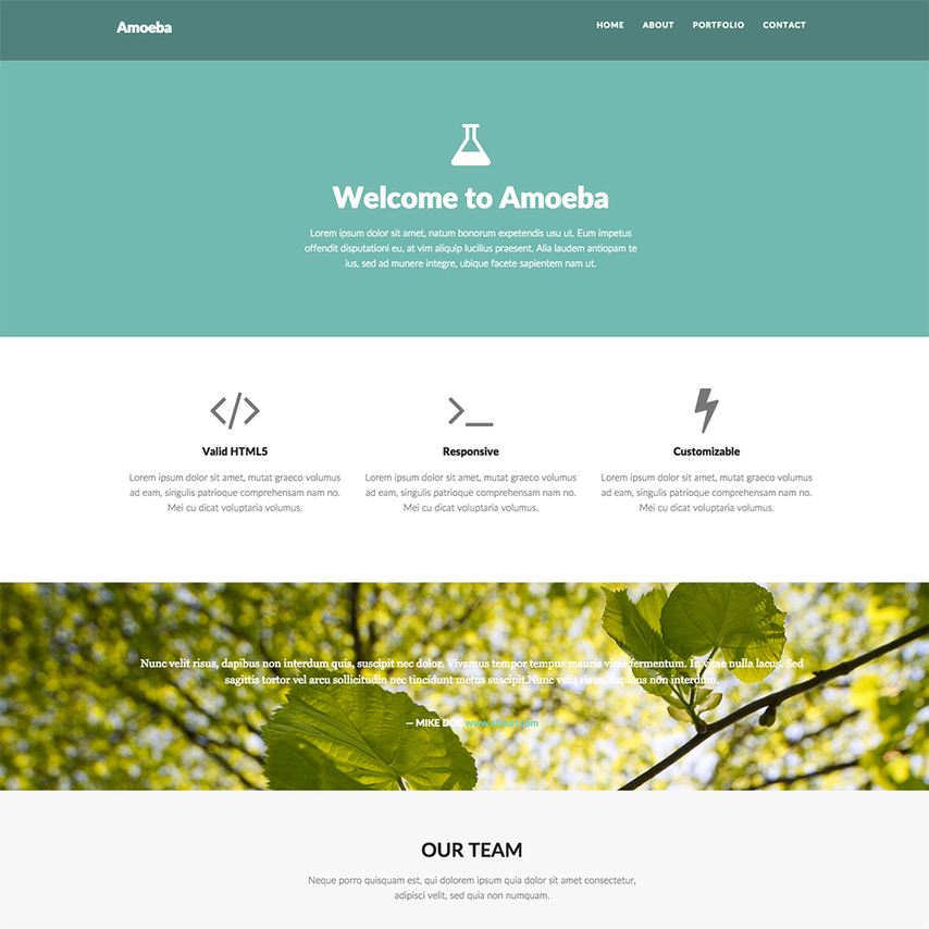 Amoeba Free Bootstrap Responsive Website Template