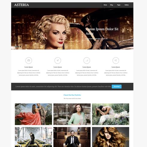 Asteria Free Responsive Wordpress Theme