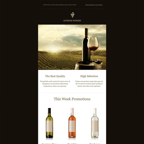 Winery Free Responsive Newsletter Template