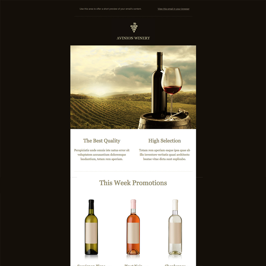 winery-free-responsive-newsletter-template Team Business Newsletter Template on business website headers, business themes, ecommerce templates, fitness newsletters templates, business reply mail template, business mailing lists, email marketing templates, appreciation flyer templates, business flyers,