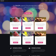 Bokeh Phaseshift Free Responsive Template